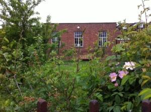Library Back Garden 2013